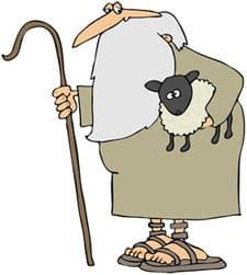 Literary agents looking shepherd