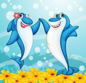 sedona-sharks
